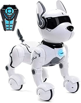 TOP RACE Smart Dog Robot Toy For Kids