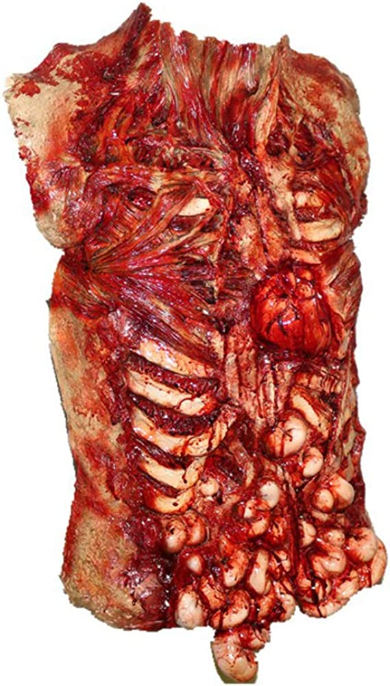 HENGYUTOYMASK Gory Bloody Torso Chest Piece Halloween Fancy Dress Zombie Guts Heart Vest Apron Masquerade Scary Decoration