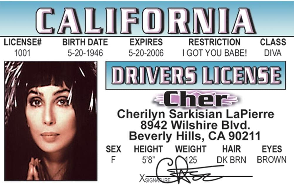 Signs 4 Fun Nchid Chers Drivers License