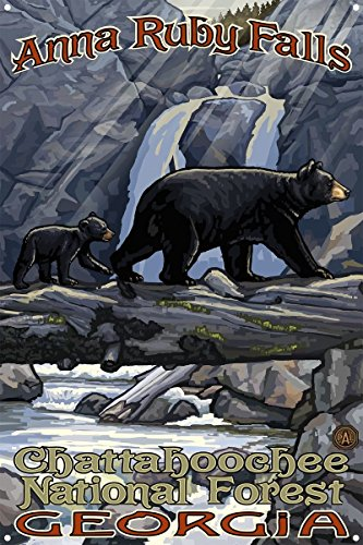 Anna Ruby Falls Geogia Bear On Log Hills Metal Art Print by Paul A. Lanquist (12