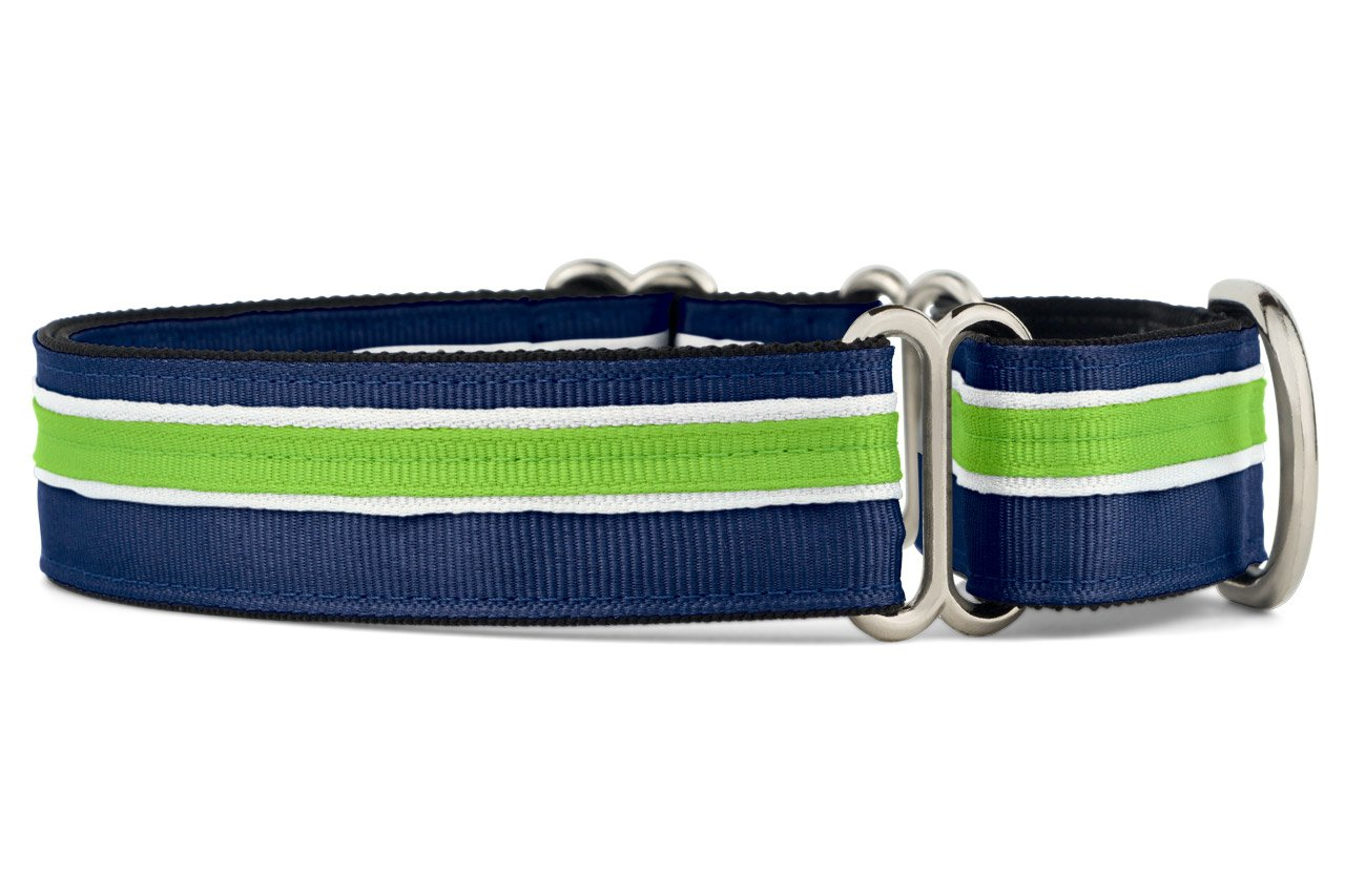 If It Barks 1'' Martingale Collar for Dogs, Adjustable Nylon, USA Made, Medium, Finley