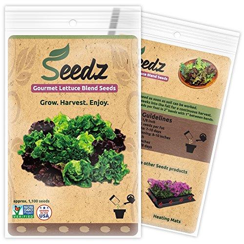 Harvest Cucumber Seeds (CERTIFIED ORGANIC SEEDS (Appr. 1,100) - Lettuce Seeds, Blend - Heirloom Lettuce Seeds - Non GMO, Non Hybrid - USA)