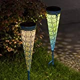 TAKE ME [2 Pack] Solar Pathway Lights Garden Outdoor,Waterproof Metal Warm White LED Stake Decorative Lights for Walkway,Yard,Lawn,Patio (Blue)