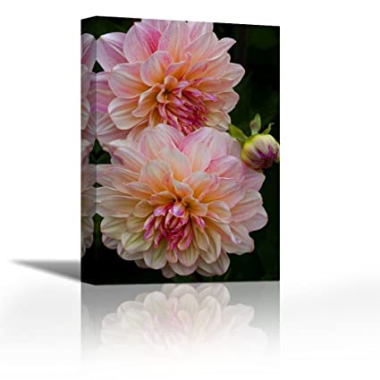 Karmakara Oregon, Shore Acres SP Dahlia Flowers Print On