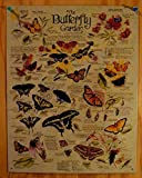 R. Lee Butterfly Garden Plants Insects Retro Vintage Tin Sign
