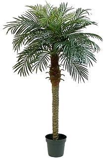 artplants.de Palmera fénix Artificial con 28 frondas, 180cm ...