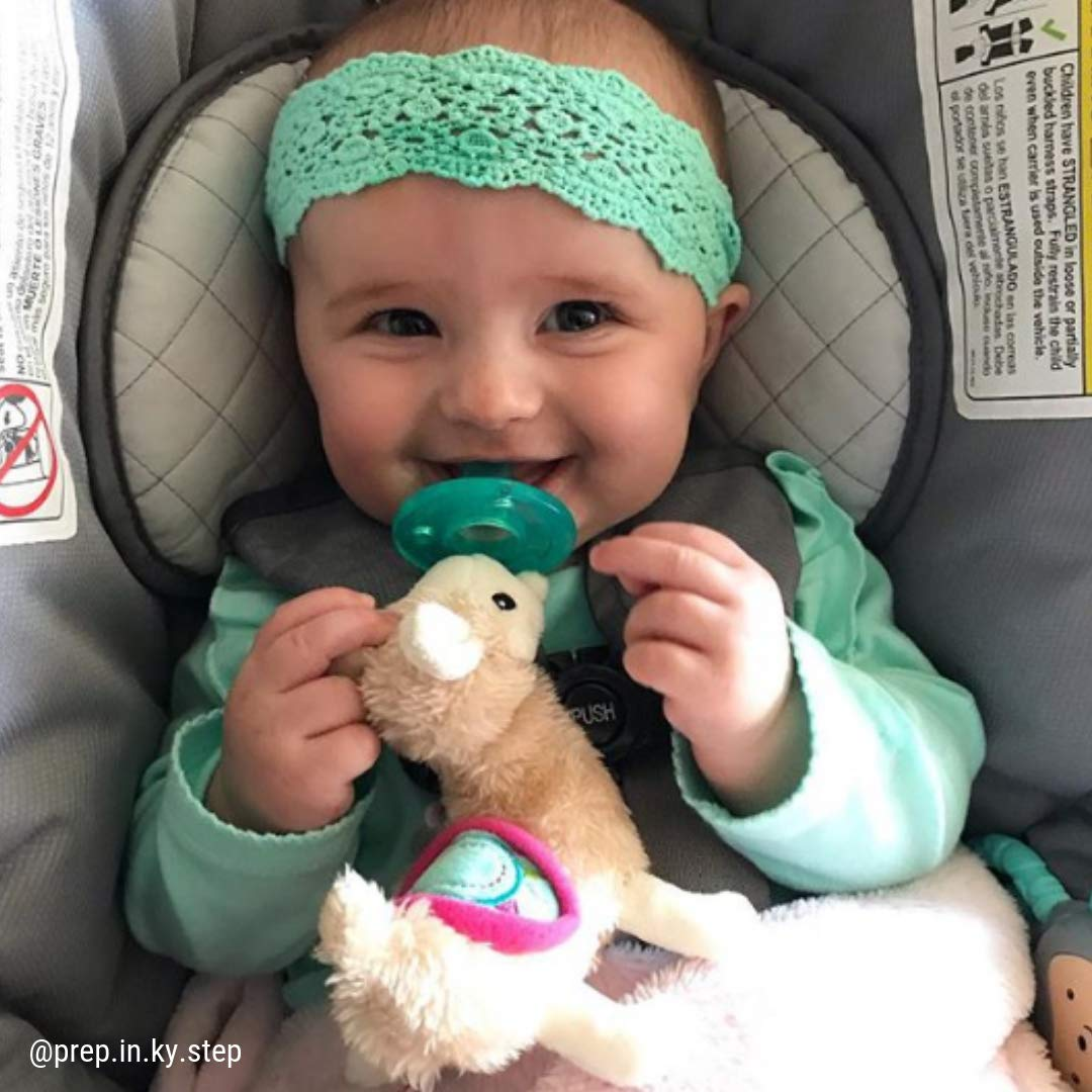Amazon.com: Mary Meyer WubbaNub Chupete para bebés ~ Lily ...