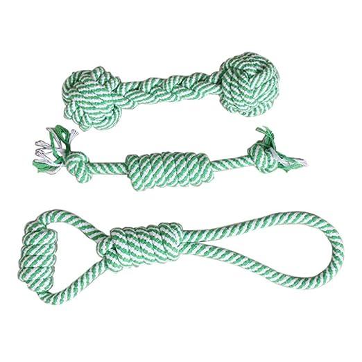 Tick Tocking - 3 Pelotas de Juguete para Perro con Cuerda elástica ...