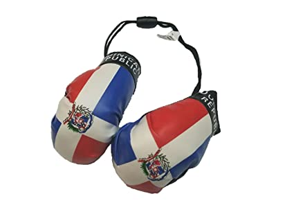 Amazon.com: República Dominicana bandera de guante de boxeo ...