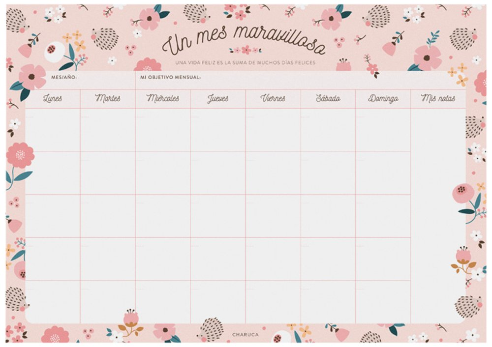 Charuca OM10–Planning Mensile, motivo riccio fiori, A4, Multicolore