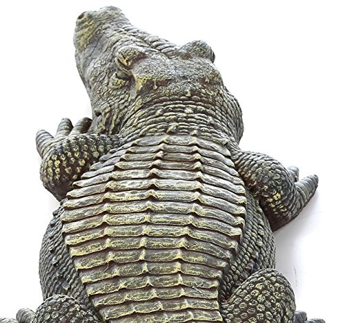 Crocodile Garden Statue- The Swamp Beast Statue Is a Perfect Garden Art- This Outdoor Animal Statue Is Handpainted, You Can Place This in Your Patio, Backyard, Lawn- A Beautiful Decor! by Design Toscano (Image #4)