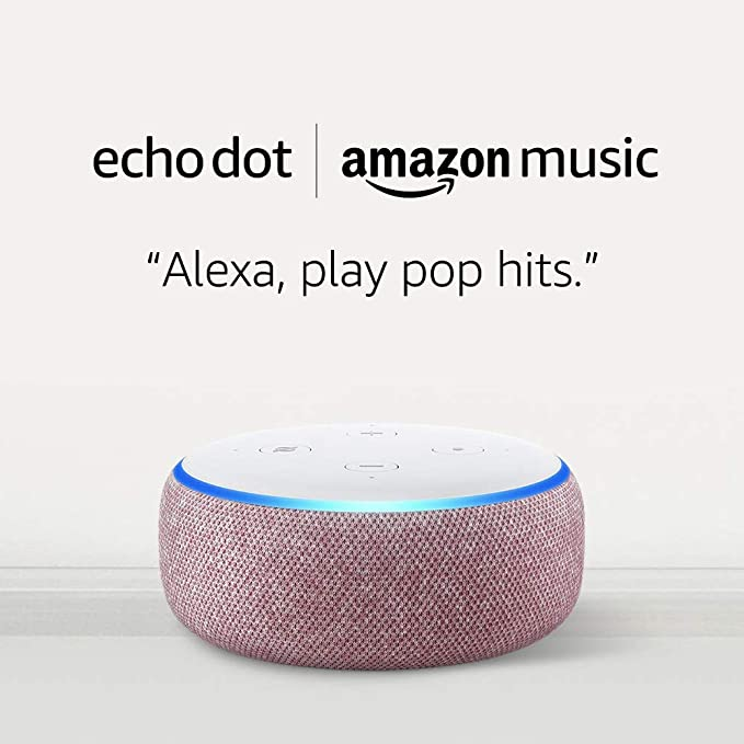 Amazon Echo Dot in plum
