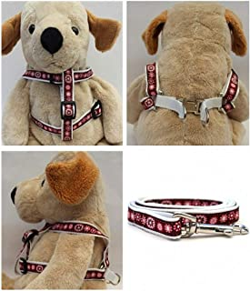 "product image for Diva-Dog 'Garden Party' Custom 5/8"" Wide Dog Step-in Harness with Plain or Engraved Buckle, Matching Leash Available - Teacup, XS/S"
