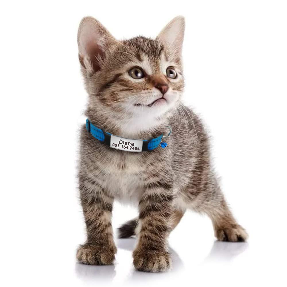 Didog - Collares Reflectantes para Gatos con Placa de Acero Inoxidable - sin Ruido, Grabado deslizable para Gatos y Perros pequeños: Amazon.es: Productos ...