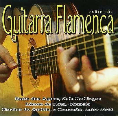 Exitos De La Guitarra Flamenca: La Voz Del Flamenco: Amazon.es: Música