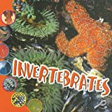 Invertebrates, Ted O'Hare, 1595154191