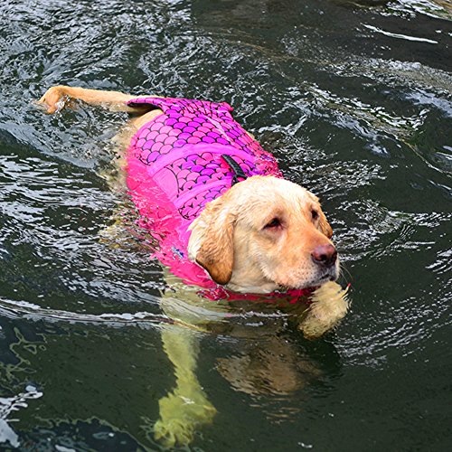 Dog Life Jacket, Adjustable Pet Life Preserver Safety Dog Swimming Pool Vest, Novice Swimmer Life Jacket Pets, Water Safety at The Pool, Beach, Boating Medium、Large (L(Mermaid)) by petbob (Image #2)