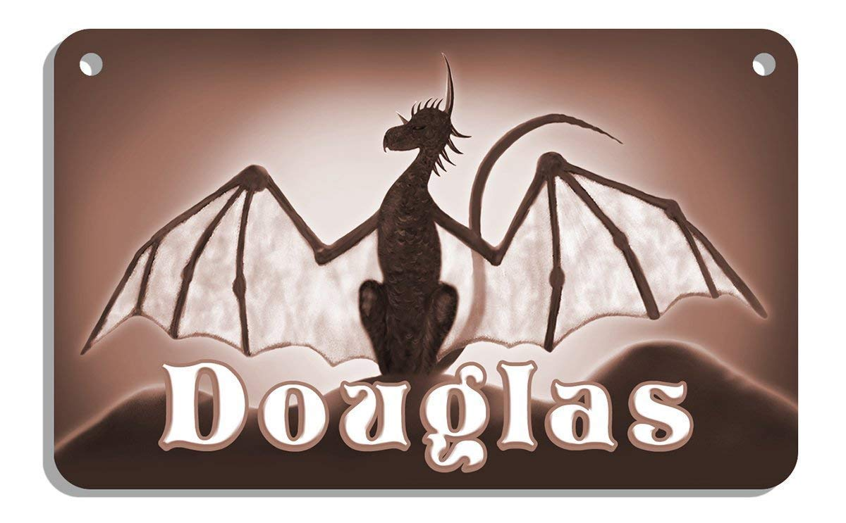 Dragons Bicycle License Plate Personalize Gifts 2.75 in x 4.5 in