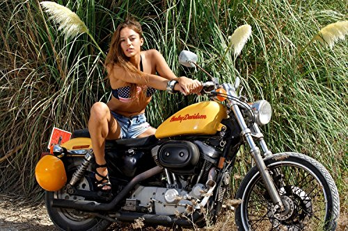Harley Davidson Motorcycle Bike Sexy Hot Girl Poster