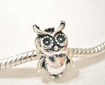47fad543e Amazon.com: Love*Lights Little Wise Owl Charm European Bead fits ...