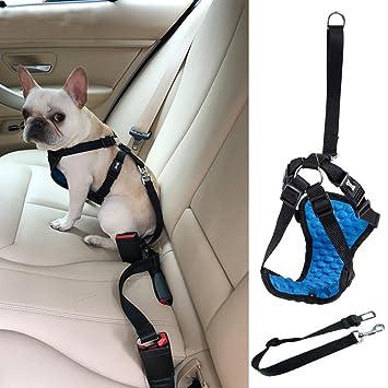 Sue Supply - Arnés de seguridad para perro, correa de conector ...