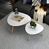 Coffee Tables for Small Spaces INLYF Nesting End Tables, Corner Stacking Tea Table, Modern Furniture Decor Side Coffee Table for Living Room, Balcony and Office, Set of 2