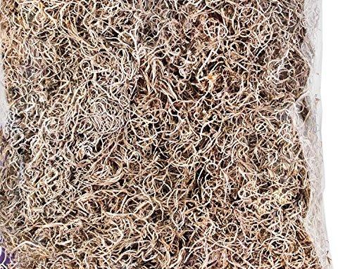 Preserved Moss 8oz Bag (spanish moss natural)