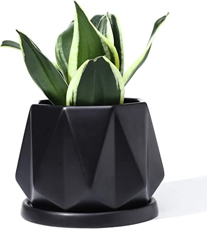 Geometric Indoor Planter Pot