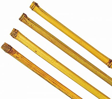 Varas de bambú 150 – 180 cm Ton Kin varillas Rank ayuda Macetero ...