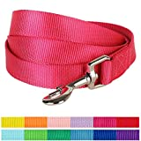 Blueberry Pet 12 Colors Durable Classic Dog Leash 5 ft x 3/4', French Pink, Medium, Basic Nylon Leashes for Dogs