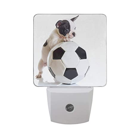 Xiaodengyeluwd Set Of 2 French Bulldog Puppy With Soccer