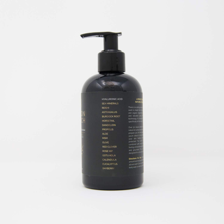 Mason & Birch Men's Face and Body Wash (8 fl  oz ) Natural and Organic  Moisturizing Skincare