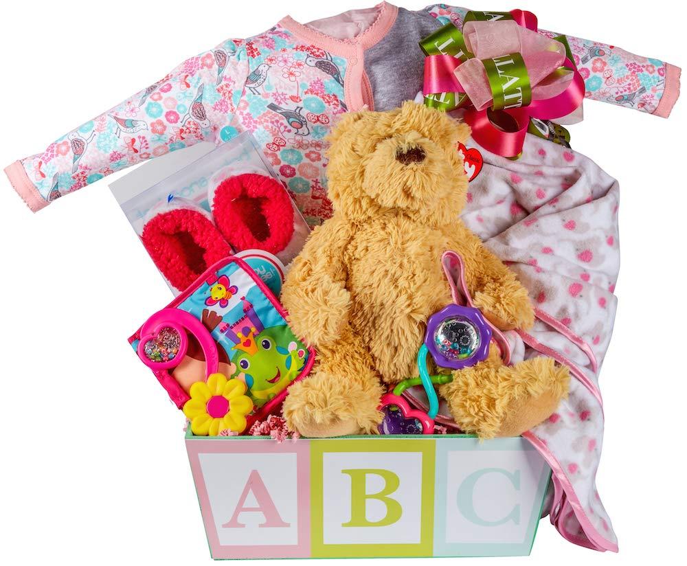 Newborn Baby Girl Gift Basket with Onesie, Blanket and Slipper Set, Plush and Toys Pellatt Cornucopia