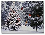 BANBERRY DESIGNS Christmas Tree   Cardinal Birds LED Canvas Print Snowy Winter Forest Pine Trees Scene Lighted Picture Wall Art with Battery Operated Led Lights