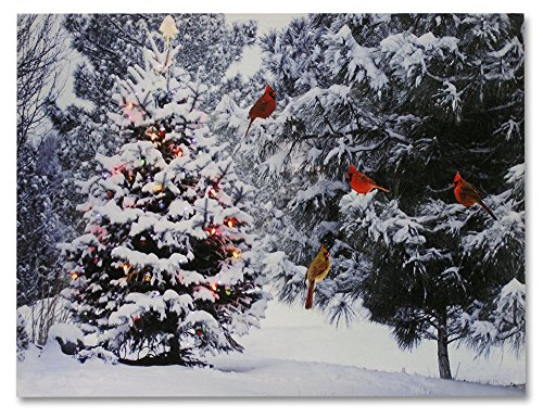 BANBERRY DESIGNS Christmas Tree & Cardinal Birds LED Canvas Print - Snowy Winter Forest Pine Trees Scene - Lighted Picture - Wall Art with Battery Operated Led Lights]()