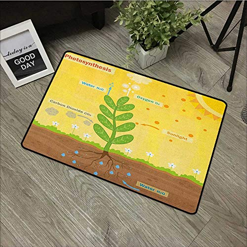 Outdoor door mat W19 x L31 INCH Educational,Cartoon Photosynthesis Oxygen Carbon Dioxide Sunlight and Water, Earth Yellow Green Umber Our bottom is non-slip and will not let the baby slip,Door Mat Car