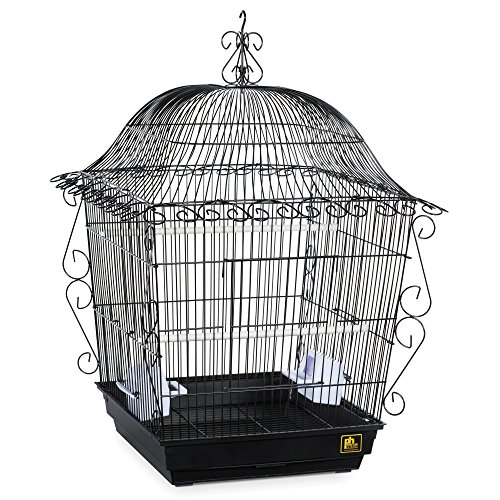 Scrollwork Cage (The Black Prevue Pet Products Jumbo Scrollwork Bird Cage)