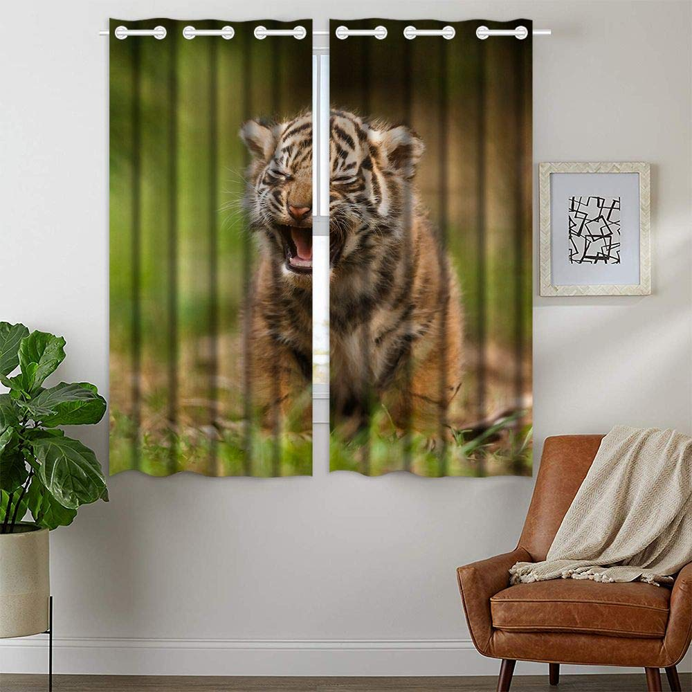 HommomH 28 x 48 Inch Tiger Cub Curtains (2 Panel) Grommet Top Blackout Shade Room Squinting Sad Expression Cute by HommomH