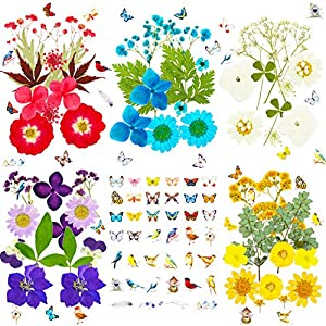 DIY Scrapbook Soap Crafts Real Natural Flowers Leaves Pressed Herbs kit with Tweezers for Resin Jewelry Pendant Art Floral Decors 120 Pcs Dried Pressed Flowers for Resin Nail Candle