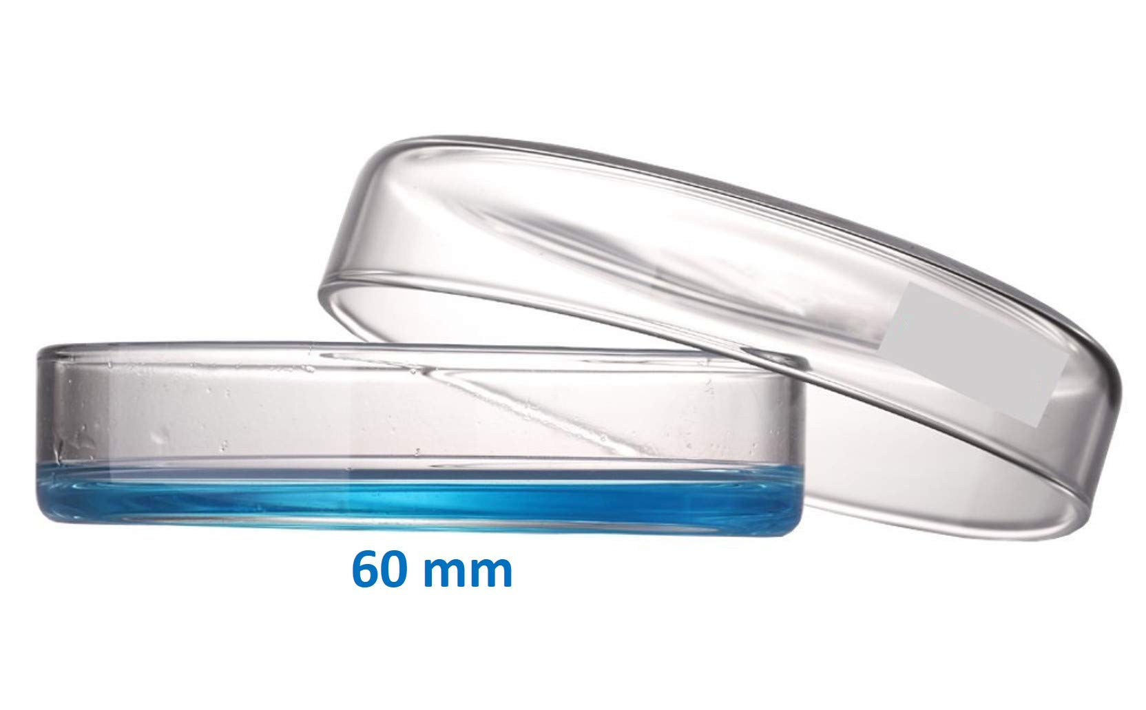 Microyn 60mm OD Glass Petri Dish with Lid, Tissue Culture Dish (Pack of 20) by Microyn