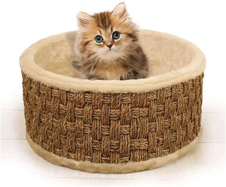 WZF Serie de Algas Marinas Arena para Gatos Gatito Nido para Dormir Primavera Verano Nido de Gatos Cómoda casa Grande Four Seasons General Kennel Puppies Small Weaving: Amazon.es: Productos para mascotas