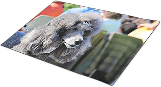 WareBuy Poodle Day Parade Carmel Rubber Outdoor Mats