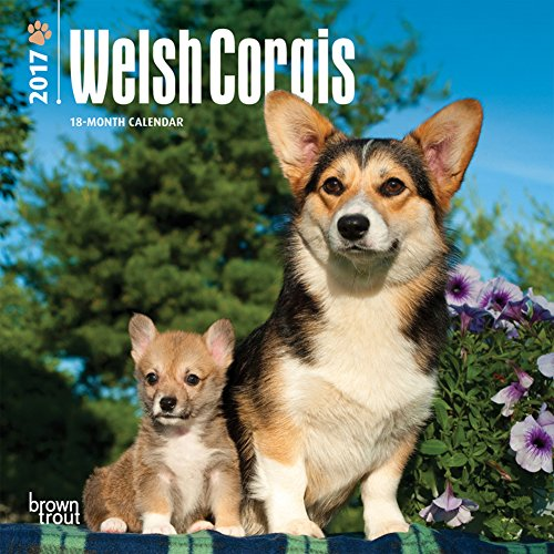 Welsh Corgis - 2017 Mini Calendar 7 x 7in