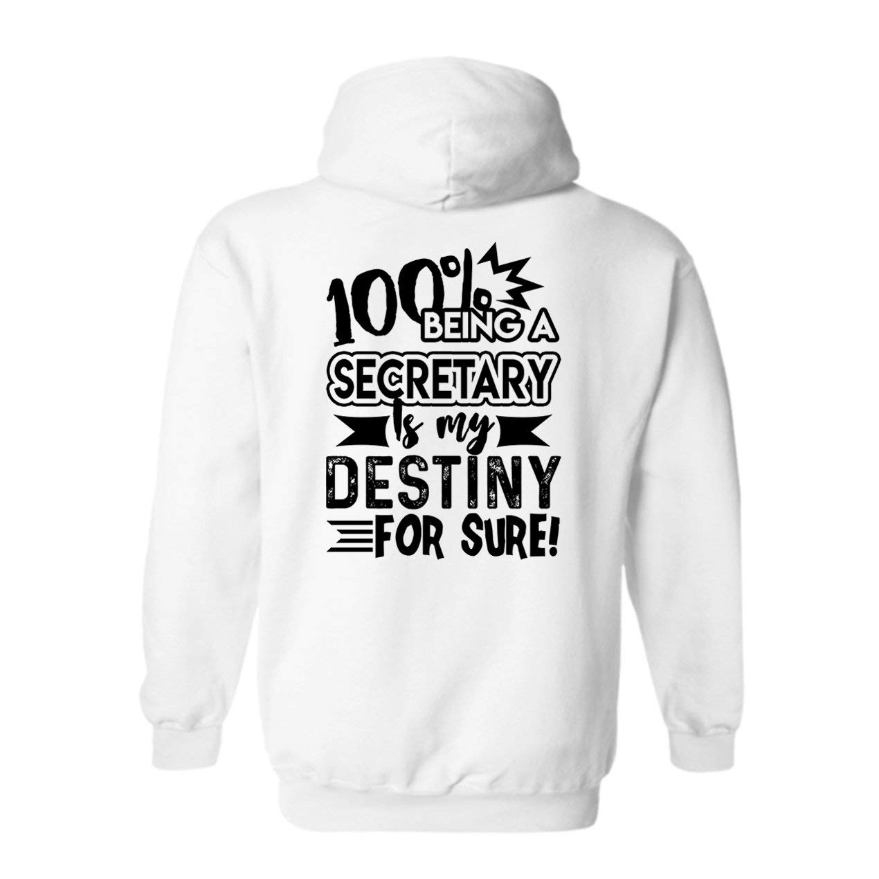 Being Secretary Is My Destiny Pullover S 7867 Shirts