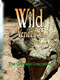 Wild Venezuela - The Orinoco Crocodile