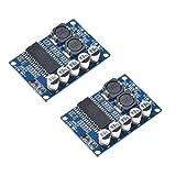 HiLetgo 2pcs TDA8932 35W Mono Digital Amplifier