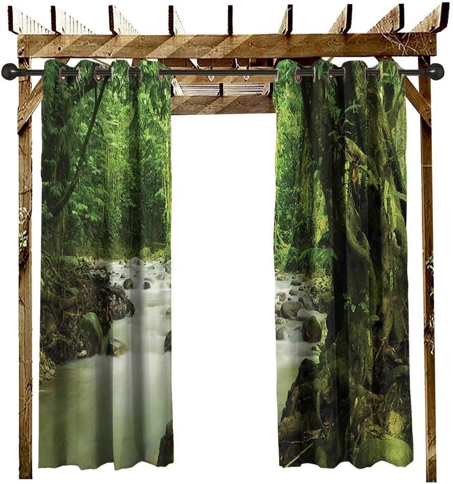 Rainforest, arandela de Cortina para Exteriores, árboles con Musgo Natural paraíso Silencio en la Naturaleza Salvaje relajación ilustración, para cenador Verde: Amazon.es: Jardín