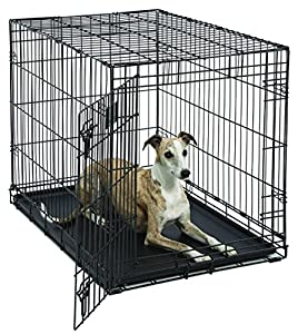 Amazon Com Midwest Life Stages Folding Metal Dog Crate