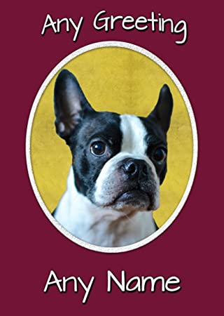 Boston Terrier Birthday Card 8x6 Mix Match On 8x6 Cards Any 3