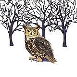Paperproducts Design Paper Winter Solstice Owl Luncheon Napkins (Set of 20)